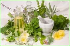 Плоды лимонника или препараты из семян
